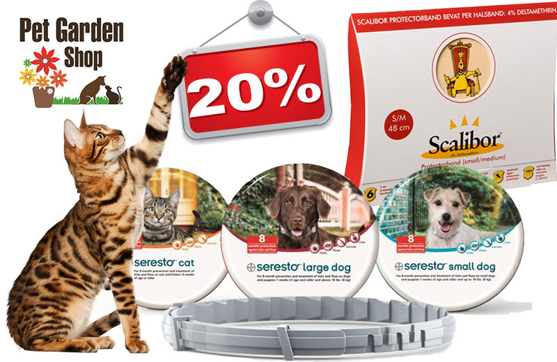 offerte pet garden shop perugia